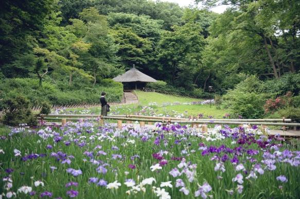 2016_Japan_161